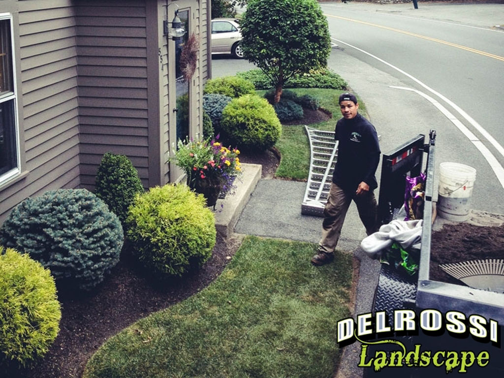 Monthly Maintenance Program - DelRossi Landscape